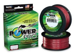 Power_Pro_Colore_5424862dc67be.jpg